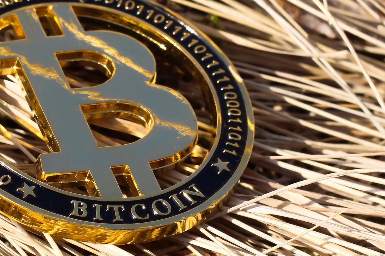 US Senator-Elect Wants to See Bitcoin as a Major Financial Player