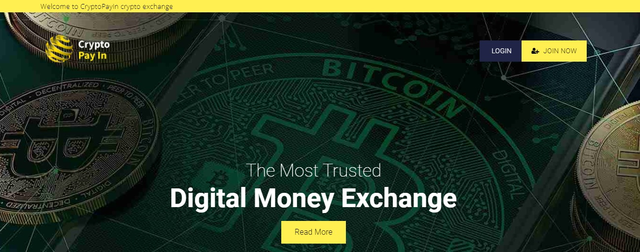 CryptoPayIn website