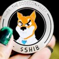 Shiba Inu (SHIB) Enters Distribution Phase – Price Forecast